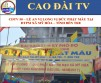 CDTV 50 – ALTAR INSTALLATION CEREMONY AT MY HOA MOTHER GODDESS TEMPLE, PROVINCE OF BEN TRE